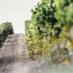 Le Figaro-fr vin, la Newsletter du 29 septembre 2016