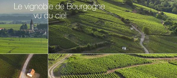 bourgogne-18-novembre-2016-2